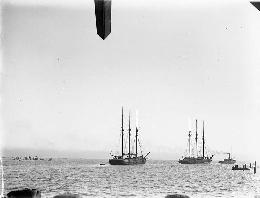 Lumber ships under tow at Grays Harbor, 1890s. Courtesy UW Special Collections.