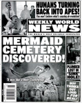 WWNmermaidcementary
