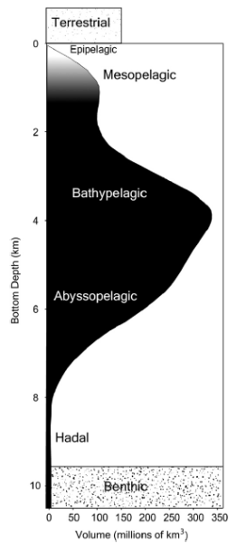 Fig. 1. Graphic representationofoceanvolumerelativetobottomdepth, illustrating thatthedeepoceanisthelargestlivingspaceonEarth.Thecurve shows theglobalvolumeofwateraboveseafloordepthsrangingfrom0to10.9km (the MarianaTrench).Theedgeofthecontinentalshelfatroughly200misthe traditional boundaryofthedeepsea.Ecologicaldepthzonesoftheoceanicwater column: epipelagic,upper150200m;mesopelagic,downto1000m;bath- ypelagic, 14km;abyssopelagic,48km;hadal,below8km.Thedisplayed volumes ofterrestrialandbenthicenvironmentsincludethesurfaceareasofthe dry landandtheseafloorandtheairorwaterabovetoaheightof1km.(From Robison, 2009; Datasource:UNAtlasoftheOceans- www.oceansatlas.org/).