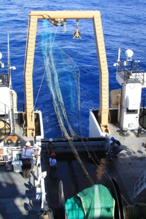 Mid-water trawl being deployed off the back of the Pisces